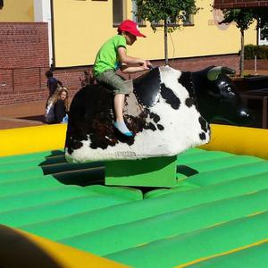 Bullriding – Rodeo